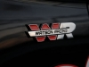 2015-ford-mustang-ecoboost-watson-racing.jpg
