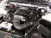 Mustang Spec Iron 40 -4