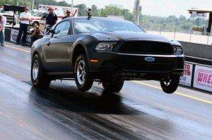 Mustang Wheelie Bar